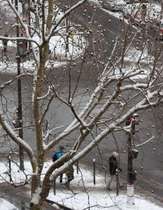 Chutes de neige à Paris, par Bénédicte Mahé